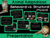 Animal Adaptations : Physical Vs. Behavioral Presentation