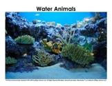 Animal Habitats / Animal Homes - Picture Sorts