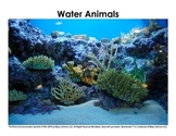 Animal Habitats / Animal Homes - Picture Sorts
