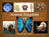 Animal Kingdom Power point TEK 7, 8B, 10A