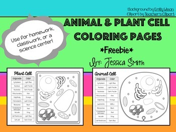 Animal & Plant Cell Match & Color Pages FREEBIE
