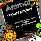 Animal Report Project