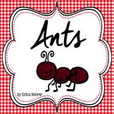 Ant Unit