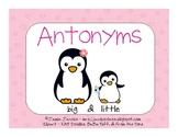 Antonyms - Presentation