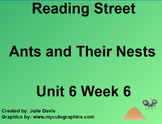 Ants and Their Nests SmartBoard Companion Reading Street