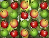 Apple Koosh Ball SMARTBoard Game
