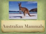 Australian Mammals Vol. 1: Introduction PowerPoint Slidesh
