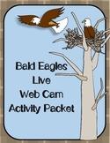 BALD EAGLES Live Web Cam Activity Packet {70 pages}