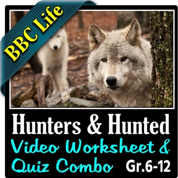 Life - HUNTERS AND HUNTED - Video Worksheet & Quiz Combo {