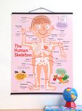 Bare Bones: Human Skeleton Chart