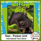 Bats! Baffling Bats: Non-fiction Unit {CCSS}