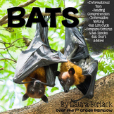 Bats ~ Informational Text, Informative Writing & More!