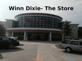 Because of Winn Dixie-The Store