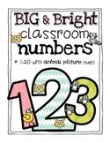 Big & Bright Classroom Numbers