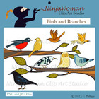 Birds & Branches Clip Art