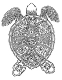 Black & White Detailed Turtle Coloring Sheet