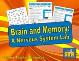 Brain and Memory: A Nervous System Lab
