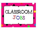 CLASSROOM JOBS POSTERS