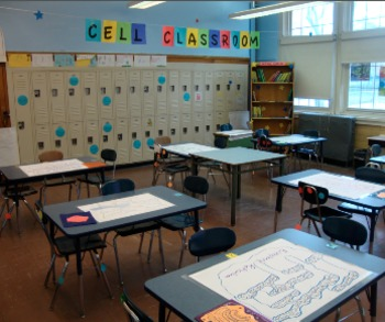 CELL ANALOGY - TURN YOUR CLASSROOM INTO A GIANT CELL ...