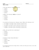 Cell Division - Mitosis Quiz