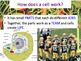 Cell Organelles & Edible Cell-O Lab Experiment - Lesson Pr