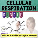 Cellular Respiration Complete Unit Plan Teaching Bundle