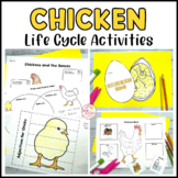 Chicken Life Cycle 25 Activities and Printables Science Fun