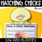 Chicks!  Common Core Activities to Accompany Hatching Chicks
