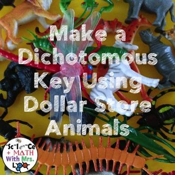 Classification: Make a Dichotomous Key using Dollar Store Animals