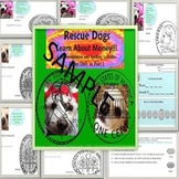 Coins Part 1 Special Needs Ed/ELD Rescue Dogs