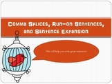 Comma Splices, Run-On Sentences, and Sentence Expansion Po