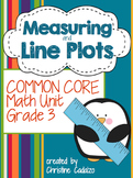 Measurement and Line Plots