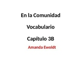 Community Vocabulary Realidades 2 Chapter 3B