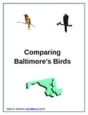 Comparing Baltimore's Birds-The Oriole and the Raven