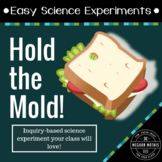 Easy Science Experiments:  Hold the Mold!