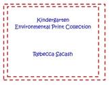 Environmental Print Poster