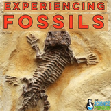 Fossils Activity