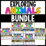 Animals - BUNDLE