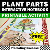 Plants Parts of a Flower Diagram Interactive Notebooks Bio