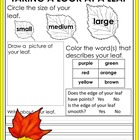 Fall Leaf Observation Sheet: Science Center Activity