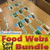 Biome Food Chain & Food Web Card Sort Bundle