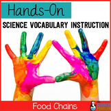 Food Chains Vocabulary Lesson