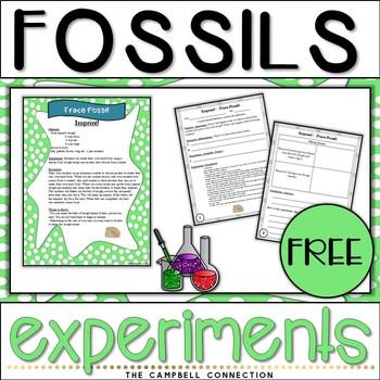 Fossils Experiment Freebie!