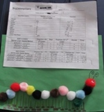 Fraction Caterpillar Sheet