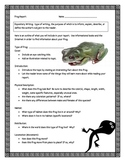 Frog Informational Report Writing Sheets, 12 Total Pages!!