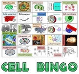 Game: Cell bingo