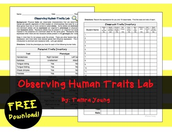 Genetics: Observing Human Traits Lab {Free}