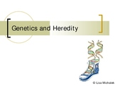 Genetics and Heredity PowerPoint Presentation Lesson Plan
