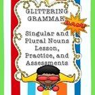 Singular & Plural Noun Lesson, Worksheets, Exit Slips, Quiz
