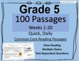 Grade 5 Daily Common Core Reading Practice Weeks 1-20 {LMI}
